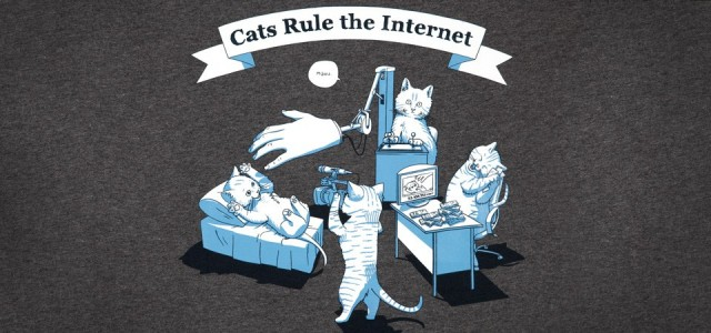 cats-rule-the-internet